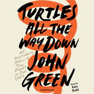 turtles-all-the-way-down-4